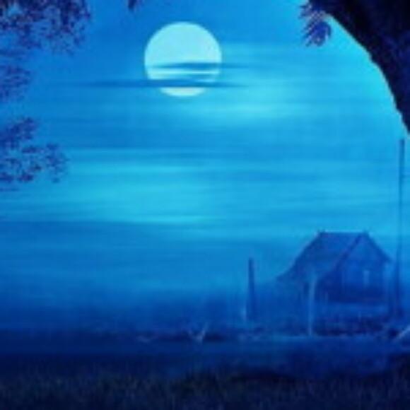 maviay kullanıcısının profil fotoğrafı
