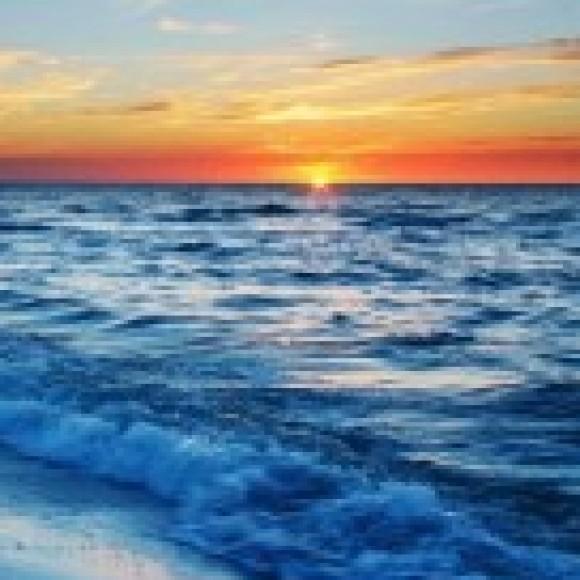 Deniz kullanıcısının profil fotoğrafı